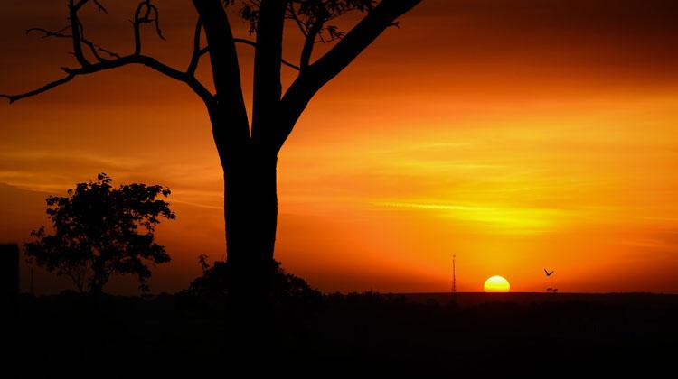 Napfelkelte fogyókúra szépség. Miért olyan szörnyű érzés, ha egy zeneszám nem megy ki a fejünkből?