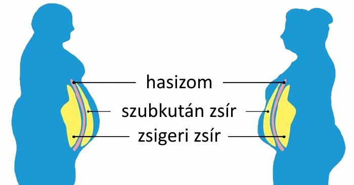 hogyan lehet eltávolítani a zsírt az alsó hasizomtól hogyan lehet fogyni, amikor a zsír