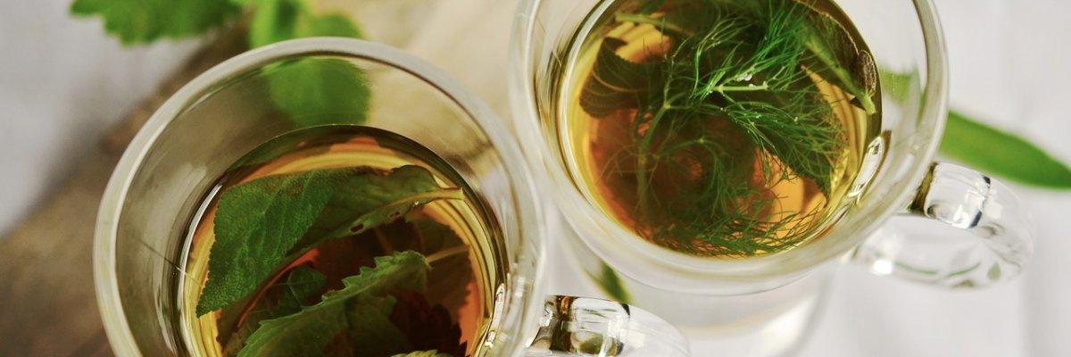 Szupergyors fogyás erőfeszítés nélkül - 6 gyógynövény, ami felfalja a zsírsejteket | Femcafe