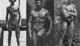 Felsőtest zsírégetés, Hatékony zsírégető edzésterv kezdőknek