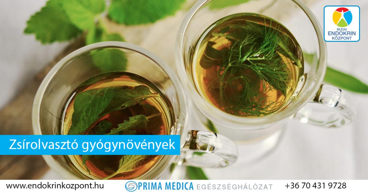 természetes gyógynövények fogyókúrás tea napi egy font zsírvesztés
