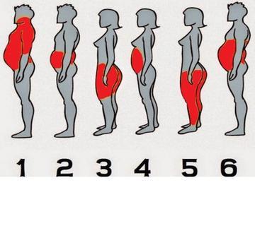 Elveszíti az összes testzsíromat. 2 hónap alatt elveszíti az összes testzsírt - vipvilaga.hu