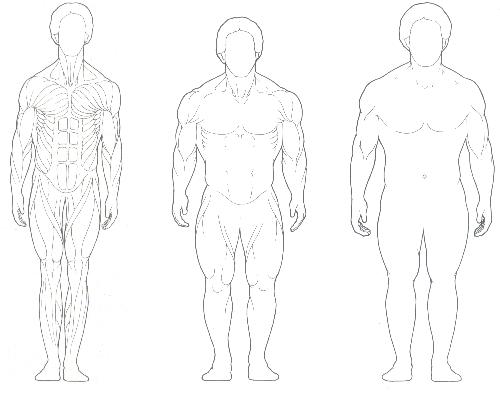 3 különböző testtípus létezik – te tudod, melyikbe tartozol?
