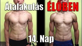 a férfiak egészsége gyorsan veszít a zsírból)