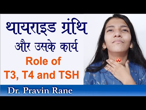 T3 t4 fogyás. A sokakat érintő probléma, ami akadályozza a fogyást: pajzsmirigy alulműködés
