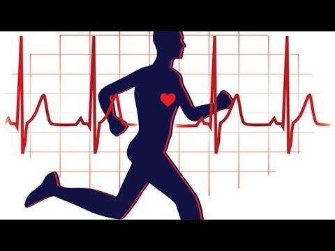 Hatékony zsírégető edzésterv kezdőknek, Zsírégetés kezdőknek