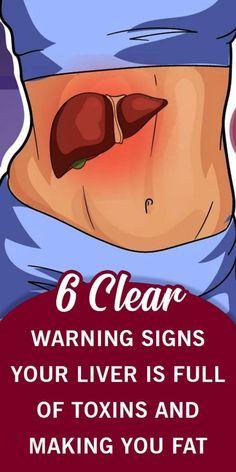bmr testzsírvesztés 3x fogyókúrás vélemény
